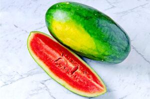 Cara menanam semangka inul agar berbuah